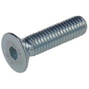 Sisekuuskantpolt peitpea M8-M12 x 35-80 mm, 10.9 DIN 7991